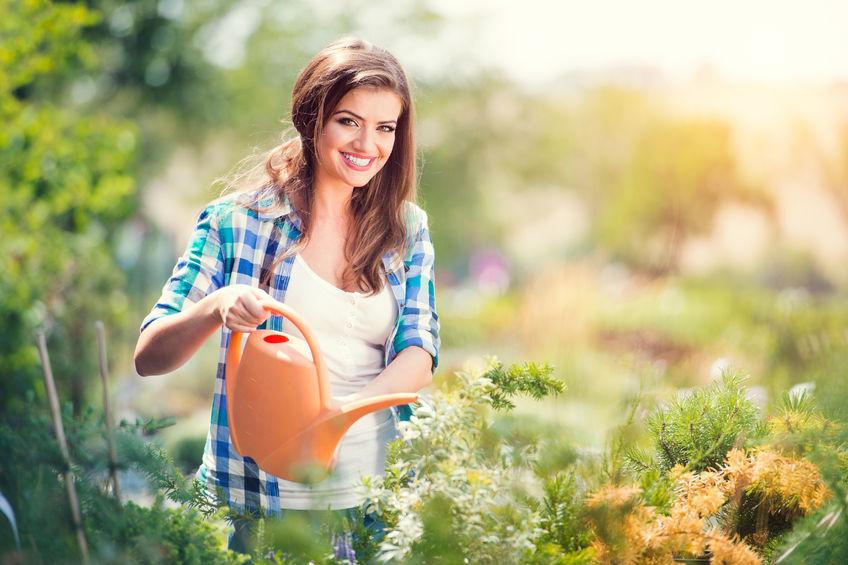 Csodás kertre tehet szert Ön is!